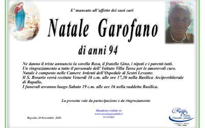 NATALE GAROFANO